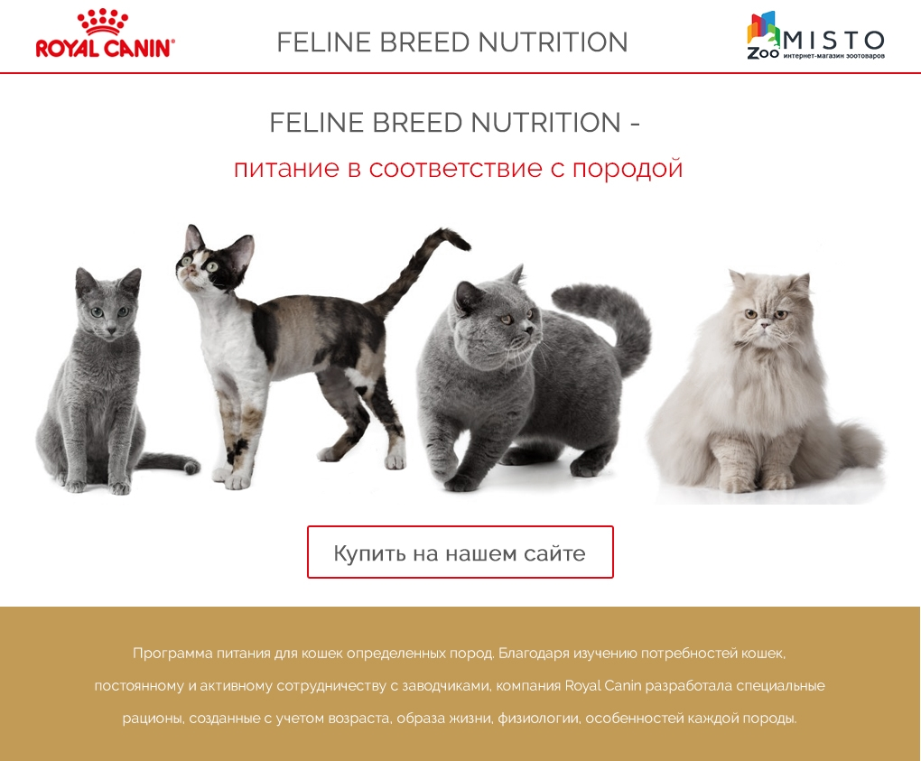 Feline Breed Nutrition
